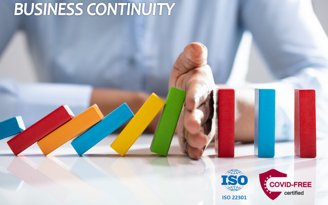Business continuity during the COVID-19 pandemic